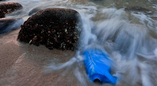 plastificante más utilizado mundo es tóxico