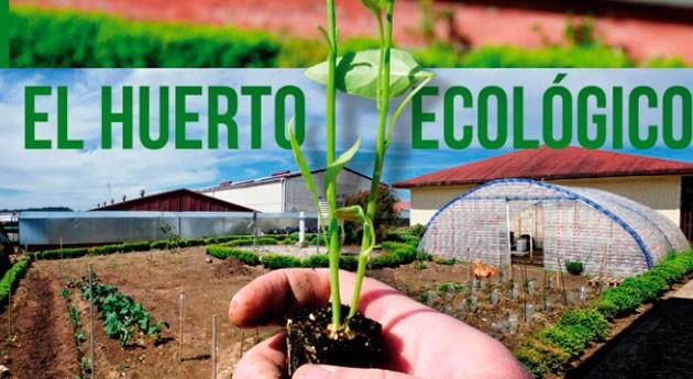 """"""" Huerto Ecológico es libro todos clara vocación educativa"""""""