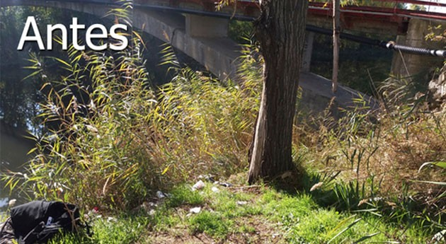 marcha acciones limpieza y mejora río Henares paso Alcalá