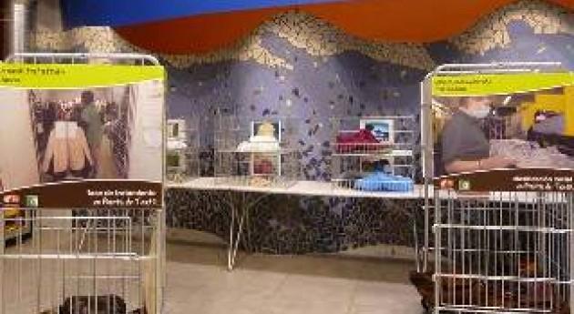 Vizcaya reutiliza 3.000 T residuos domésticos gracias prevención