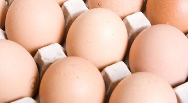 Campaña: Tu basura vale huevo