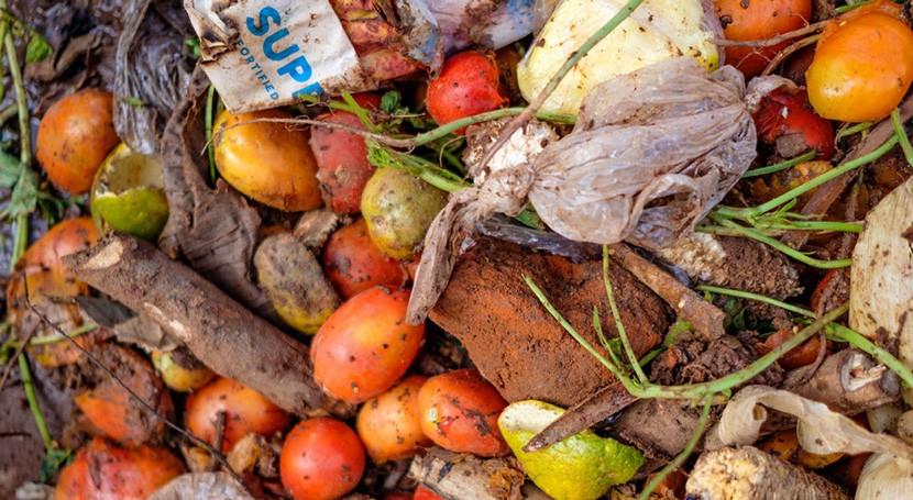 mundo desperdicia 17% alimentos mientras 811 millones personas sufren hambre