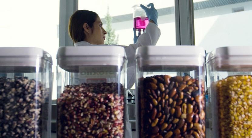 Tecnologías lograr cero pérdidas alimentos poscosecha