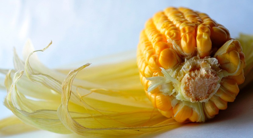 Desarrollado biopolímero elaborado partir almidón maíz