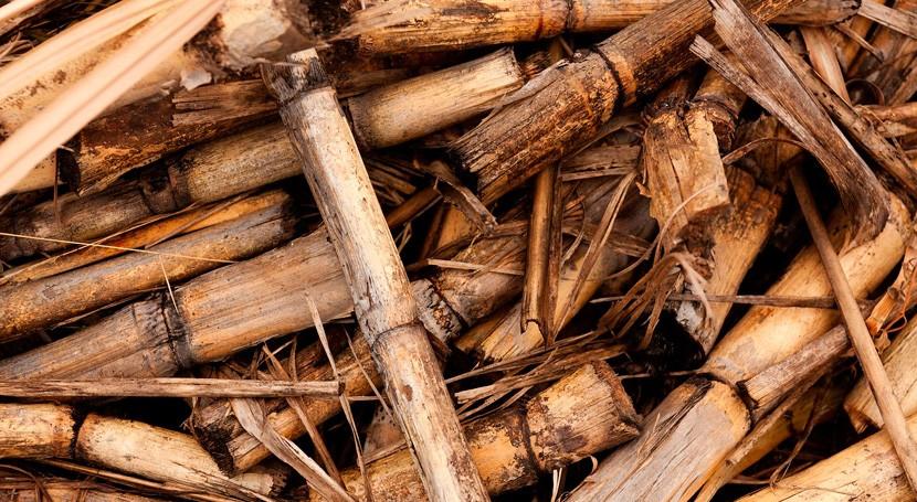 Casi 3.300 hogares Comunidad Madrid se sumaron 2018 calefacción biomasa