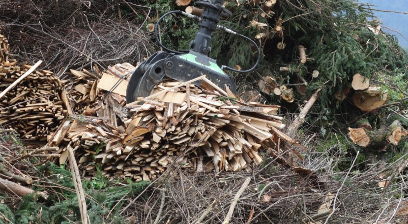 Préstamo 50 millones euros BEI financiar planta biomasa Galicia