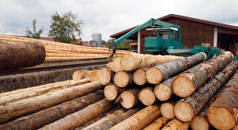 negocio biomasa calefacción Cataluña supera 93 millones euros 2018