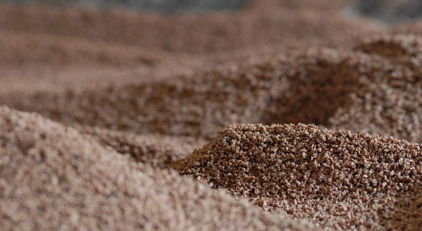 México inaugura Planta Piloto producción biomasa cultivo microalgas