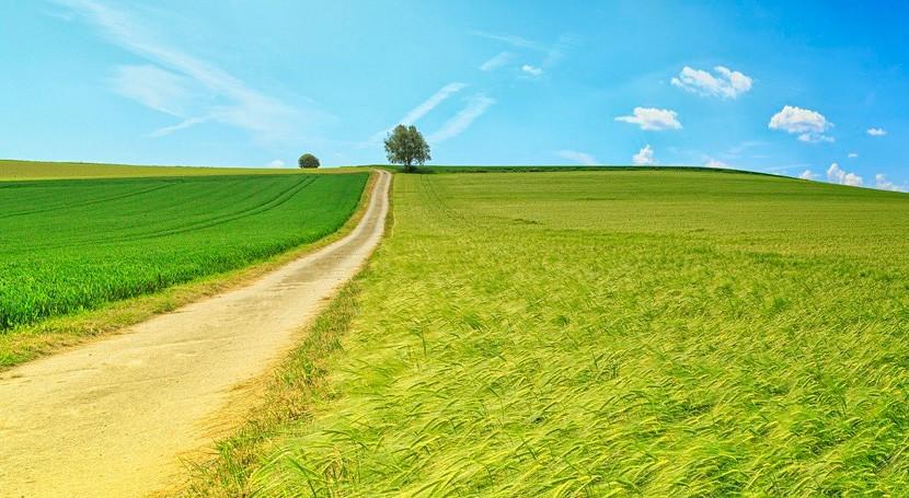 contaminación tierra y suelo: generalizada, nociva y creciente
