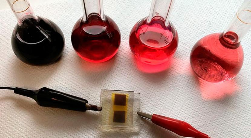 Estudian producción energía limpia partir sobras vino