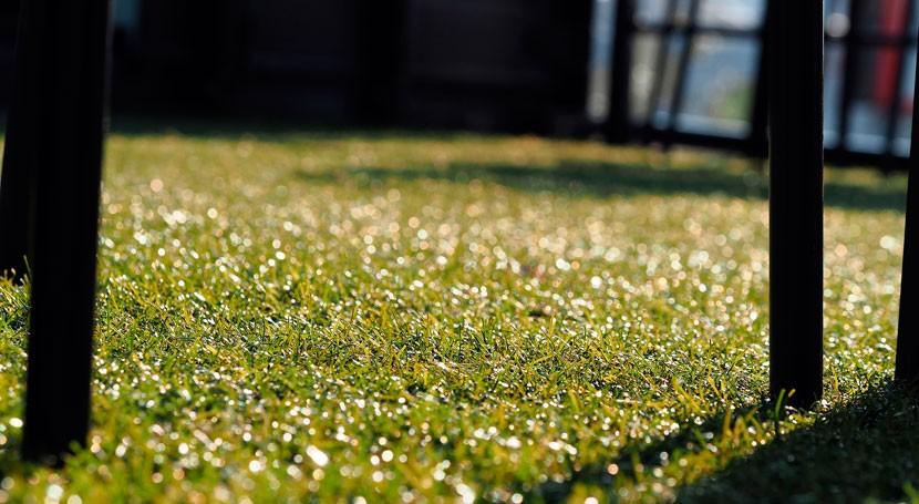 ¿Es seguro uso caucho reciclado como relleno campos fútbol?