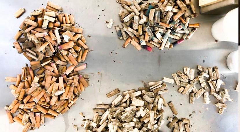 proyecto logra eliminar colillas cigarro convirtiéndolas bioplástico