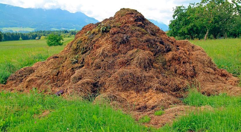Desarrollado Argentina sensor que optimiza producción compost