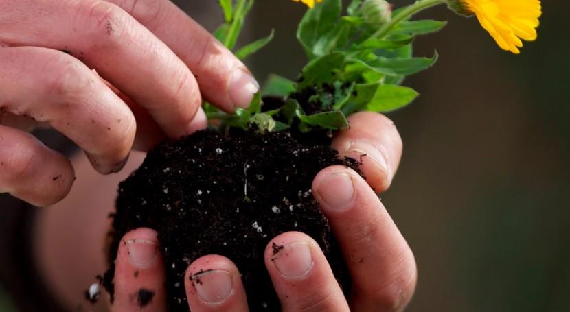 Sogama ha repartido cerca 7.400 compostadores distintas entidades gallegas