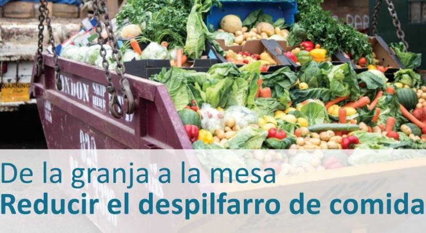 ¿ qué es importante reducir despilfarro comida?