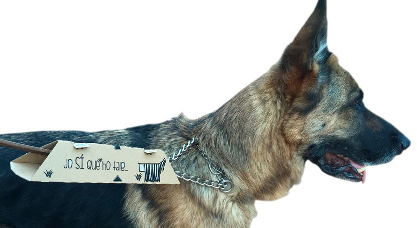 Ecopoop, alternativa sostenible recoger heces perro