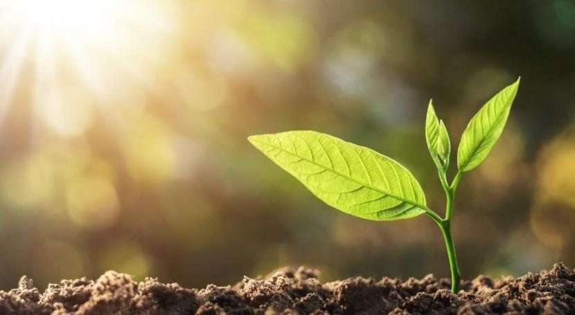 Servicios acreditados ENAC, al servicio consecución ODS Medio Ambiente