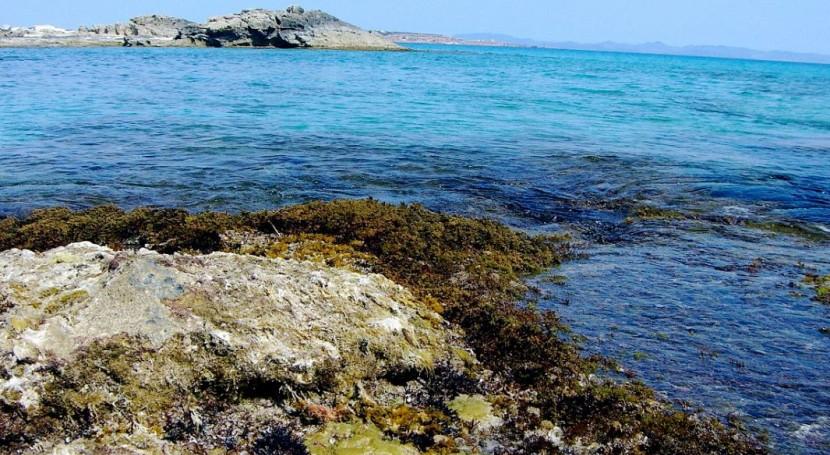Formentera presenta Plan Director Sectorial Residuos