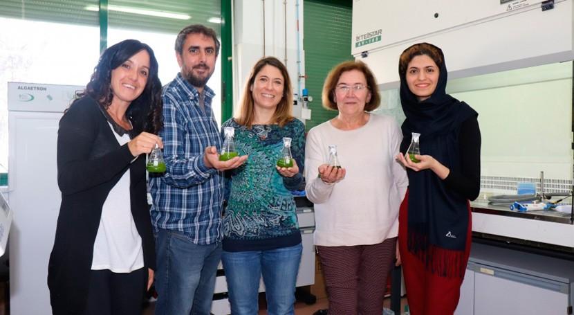 investigación emplea algas y bacterias descontaminar aguas residuales rurales