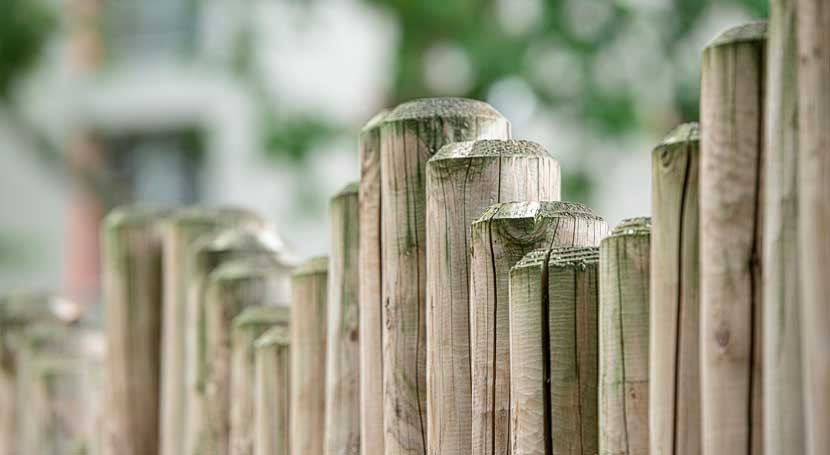 busca capas refuerzo origen biológico materiales construcción madera