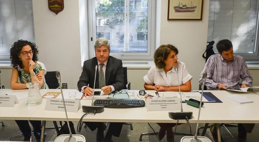 """""""Más alimento, menos desperdicio"""": MAPAMA presenta propuestas nueva etapa programa"""