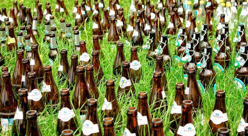Diseñado material aislante techos verdes partir desechos industria cervecera