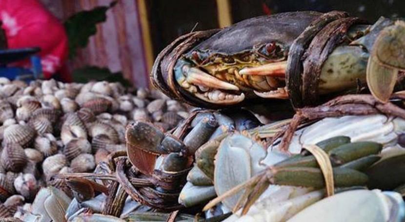 ¿Deberían preocuparnos microplásticos pescado y mariscos?