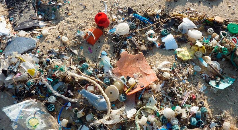 ¿Sabes cómo contaminan microplásticos?