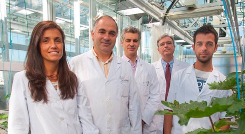 Científicos UNAV desarrollan tecnología fabricar nuevos fertilizantes