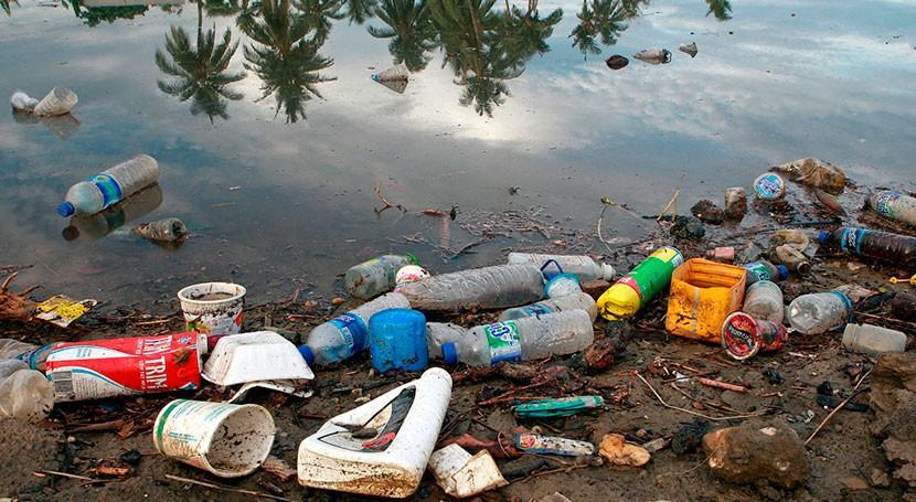 protección biodiversidad marina, debate Conferencia ONU Océanos