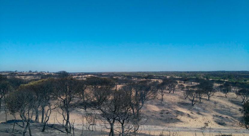 abandono residuos aumenta riesgo incendios forestales