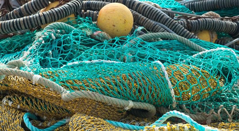 Biofertilizante, segunda vida residuos pescado