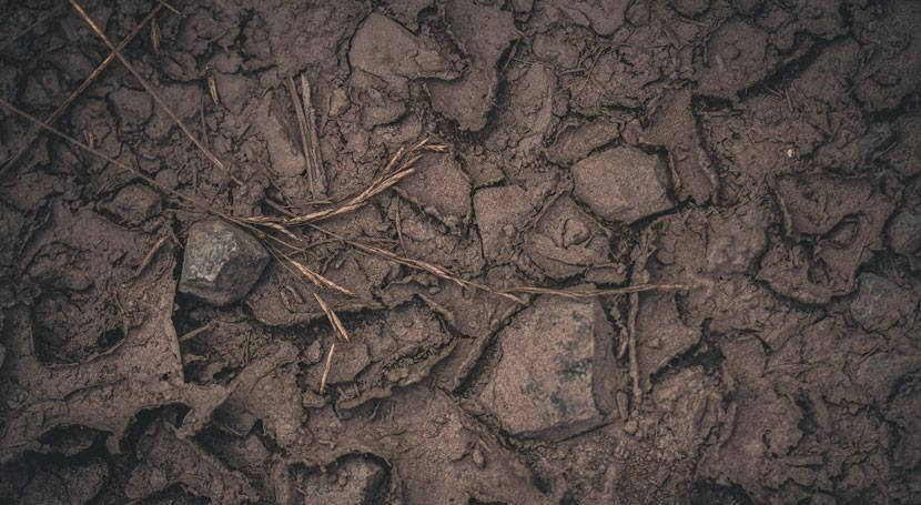 Programa Andaluz Suelos Contaminados contará 7 millones euros 2016 y 2021