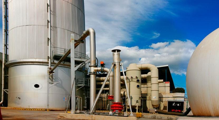 remodelación planta Can Barba cuenta presupuesto 8 millones euros