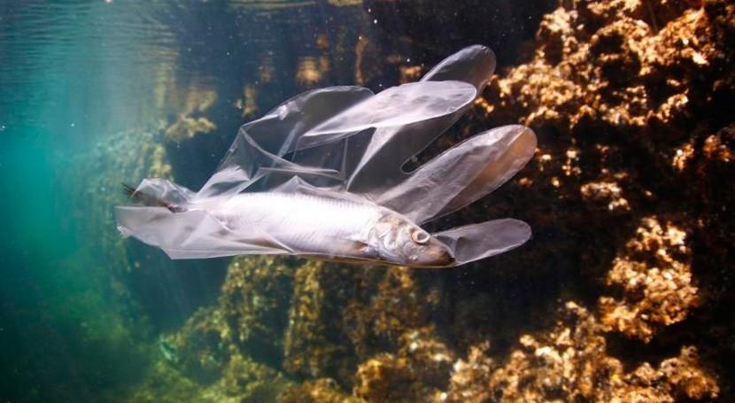 estudio UICN, cada año se vierten 200.000 toneladas plástico al Mediterráneo