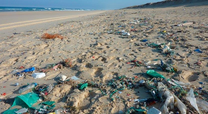 Mediterráneo al Atlántico: Limpieza 17 playas luchar residuos marinos