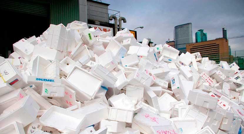 espuma biodegradable partir tamarindo podría sustituir al poliestireno expandido