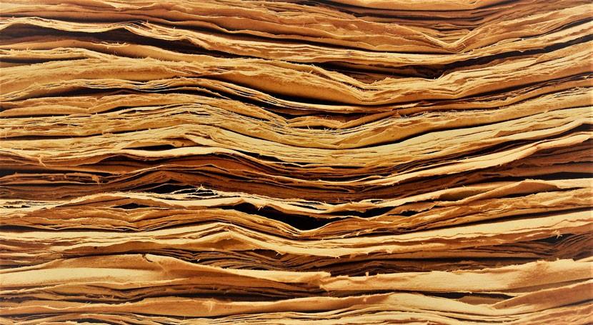 Obtener compuestos alto valor añadido residuos industria papelera ya es posible