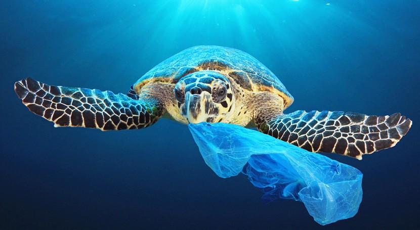 plásticos solo uso, prohibidos partir 2021