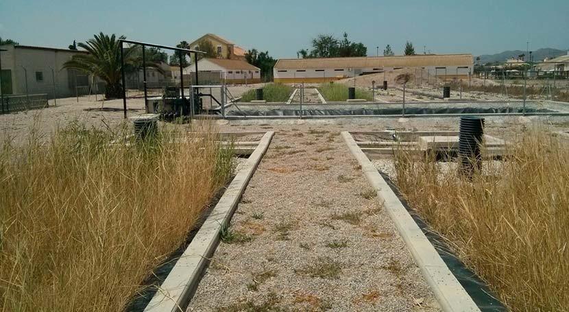 Metodología 'low cost' valorizar purines zonas semiráridas