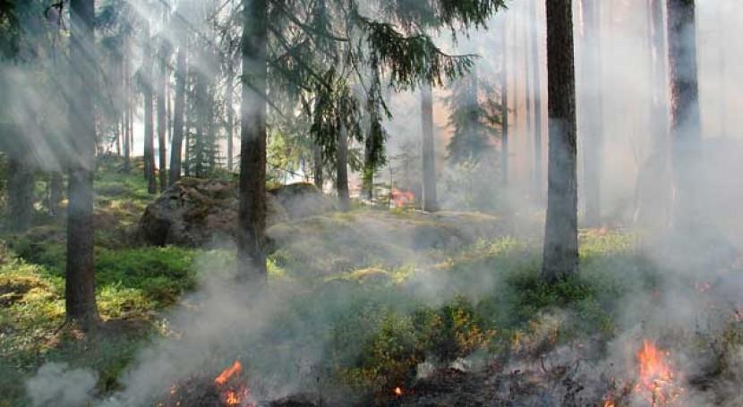 residuos, factor riesgo incendios forestales