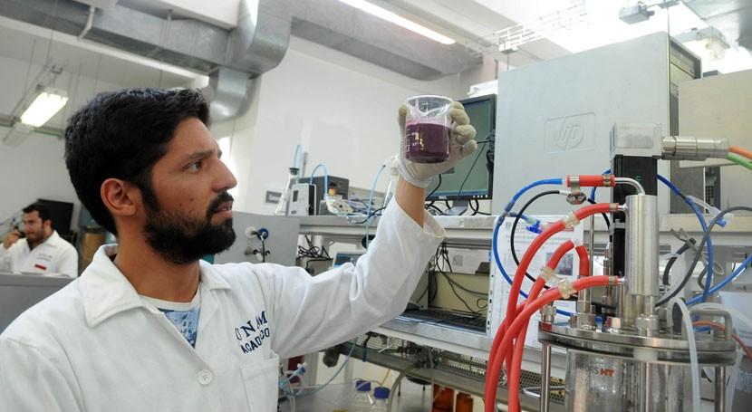 ¿Es posible producir biocombustibles partir residuos industria vitivinícola?
