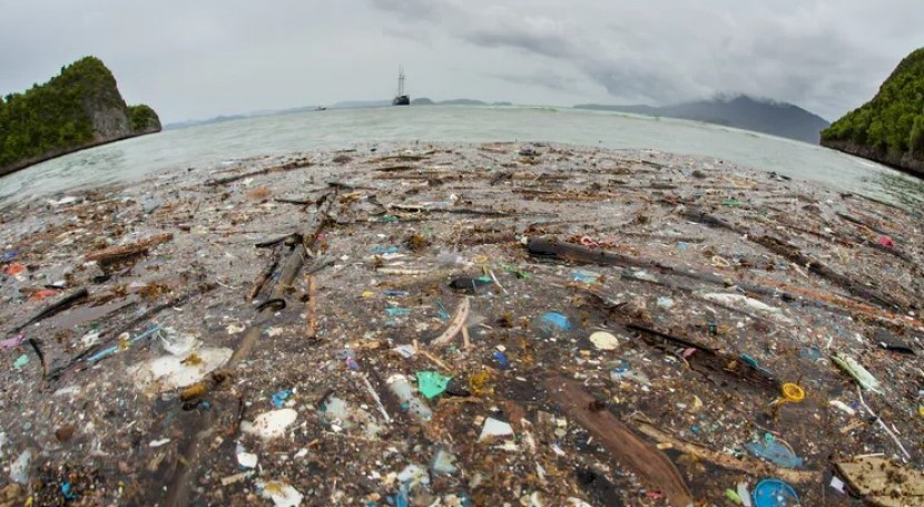 plástico envenena y mata fauna océanos