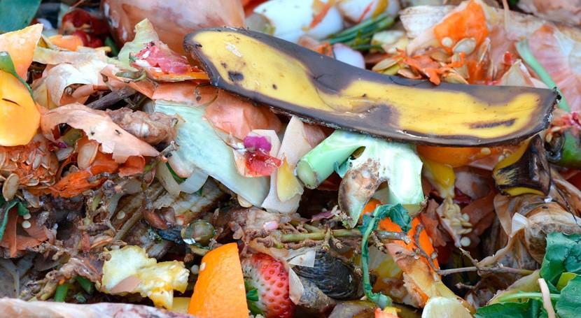 Palma triplica recogida residuos orgánicos tres últimos años