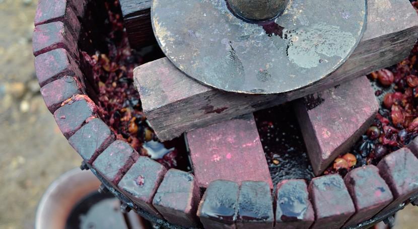 Nuevos avances revalorización residuos vino