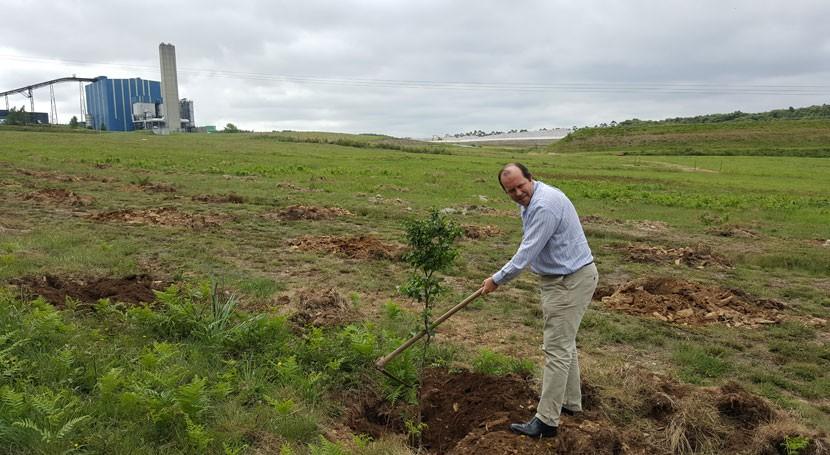 Sogama revegetará 4,11 hectáreas suelo recinto complejo industrial Cerceda