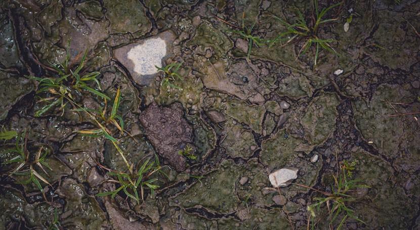 Actualizada normativa suelos contaminados