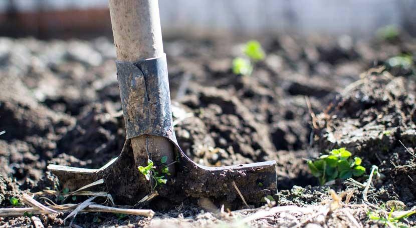 ¿ qué es importante suelo?