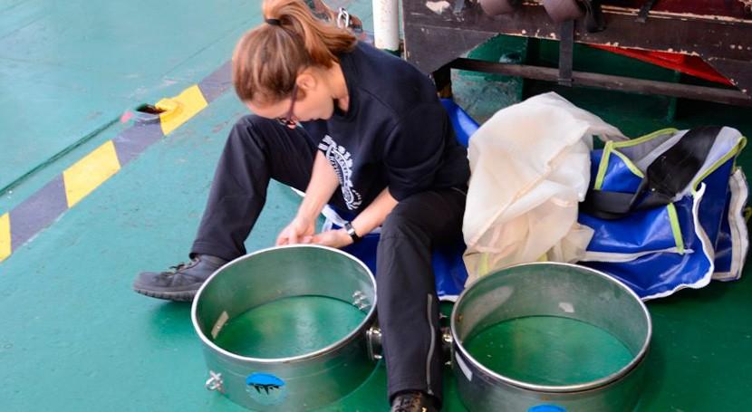 investigadora UCA establece ratio plástico y plancton