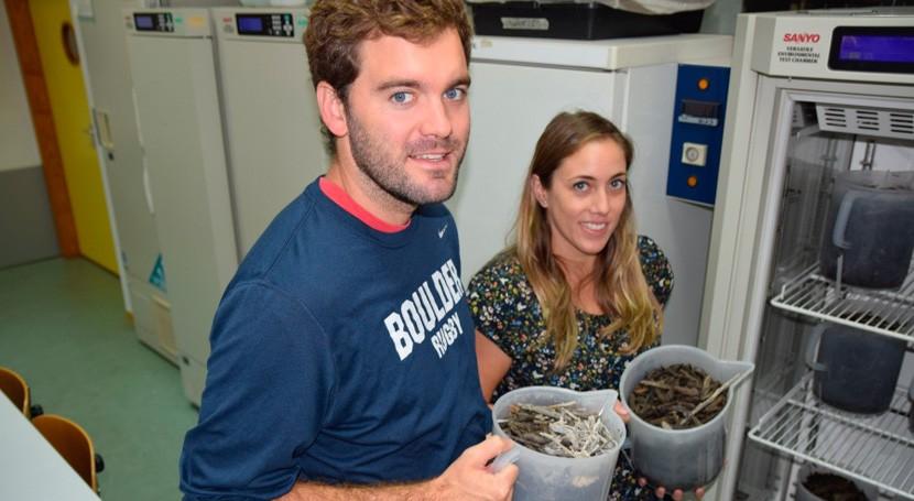 proyecto consigue eliminar salmueras procedentes desalobración aguas pozos